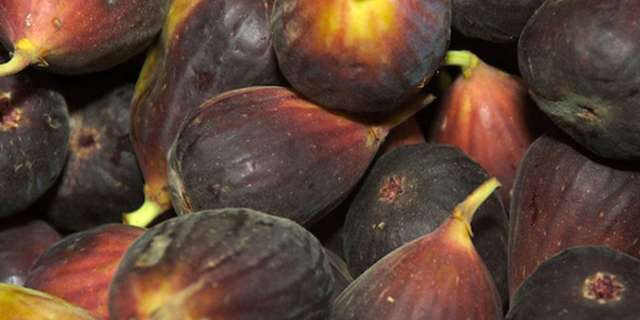 Lovely ripe fig jam